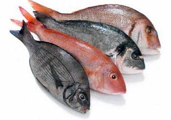Fishpicknick Novalja