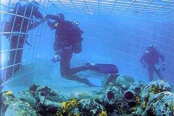 Potápění Novalja
